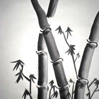 Bamboo Sumi-e painting Lesson